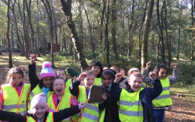 Class 5's WW1 in the Woods Adventure Day