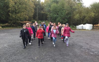 Class 9's Adventure In The Woods!