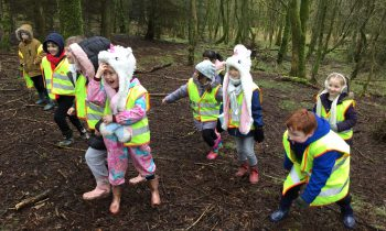 Class 6 Forest Adventures!